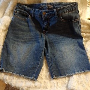 Faded Glory Stretchy Blue Jean Shorts - Size 14